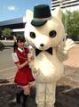 札幌ねっとてれび「コトニ」チャンネル