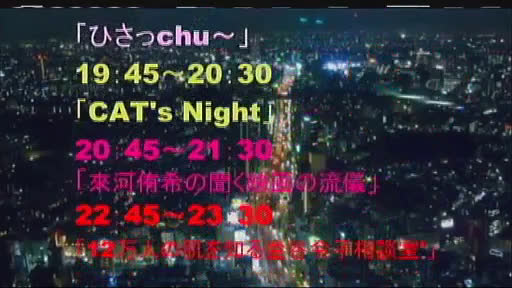 CAT'S NIGHT Vol.8