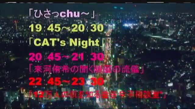 CAT'S NIGHT Vol.3