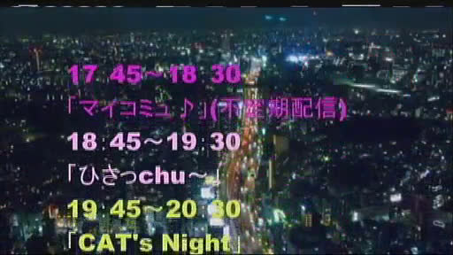 CAT'S NIGHT Vol.6