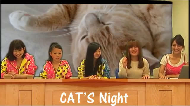 CAT'S NIGHT Vol.1