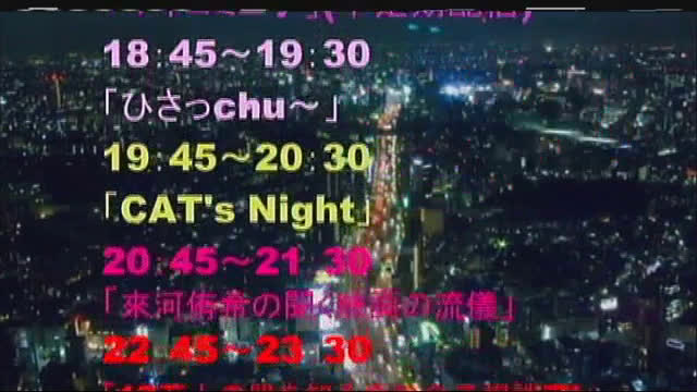 CAT'S NIGHT Vol.2
