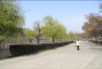 大阪城の桜見物…、③